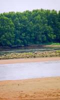 bord de Loire by Jules171