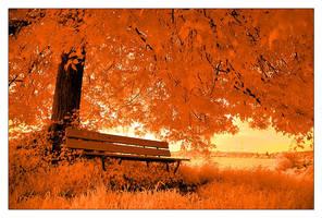 Fall by AgresticLamia
