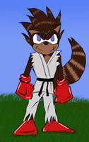 Ryu-Racoon by Khaosenvy