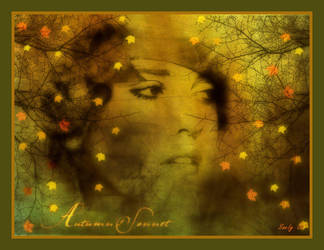 Autumn's Sonnet by sandpiperw