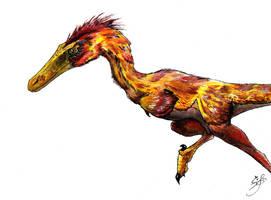 Austroraptor by SebasRuna