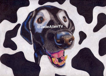 White Eyed Rowdy Drawing Labrador Realism by JadeAllenTV