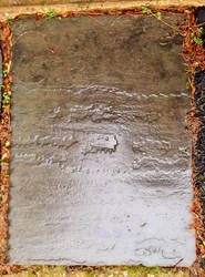 Wet Slate Texture 4.1 by marshwood