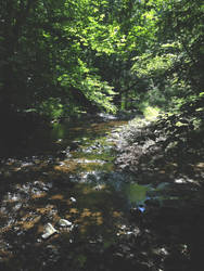 Stream 1.1.2 by marshwood