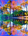Double reflection 7 by marshwood