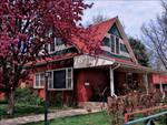 2161 Grove by marshwood