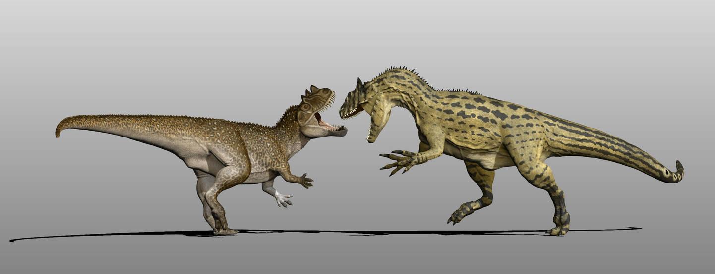 [Image: ceratosaurus_vs_allosaurus_by_manuelsaur...fk-pre.jpg]