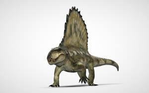 Dimetrodon by Manuelsaurus