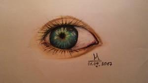 #41 by Martuu14