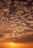 sun by kaveh67