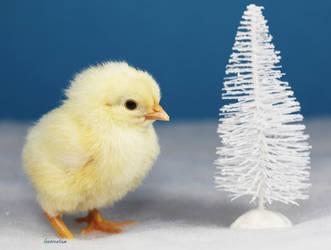 Snowy Little Tree by Innocentium