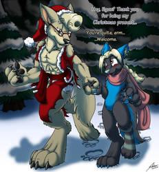 Christmas Walk by darkumbreon09