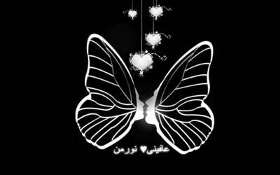 butterfly in love by finieramos