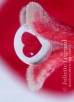 Valentine's day by Doodoox
