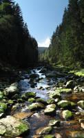 Vydra river (1) by lVlorf3us