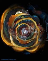 Trash Rose by sandpaperdaisy