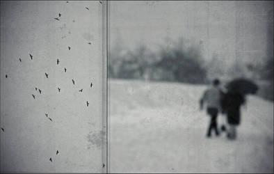 .Bird migration.People escape. by narva