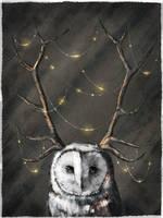 Owlish Finery by Sc0tticus