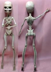 skeletonA01 by drkne