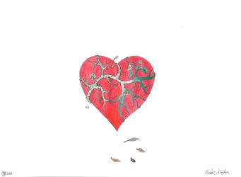 love by lukeNroll