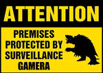 Funny - Surveillance by Gamera by shoxxe