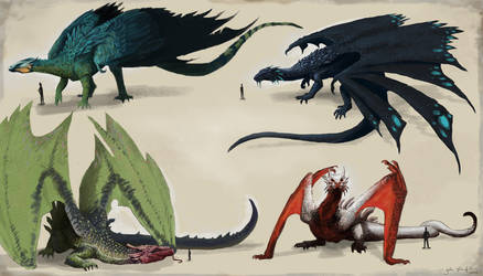 Some dragon concepts by johnboyhawkins