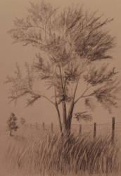 Tree on a Farm by TylersArtShack