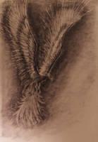 Phoenix Drawing by TylersArtShack