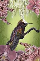 Sweetpea by plantiebee