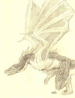 Wyvern by Zethelius