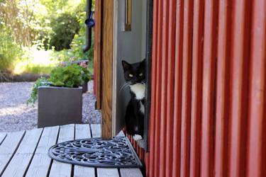 Kelly in the Doorway by Acegikm0