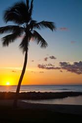 Stereotypical Hawaiian Sunset by wonderfish