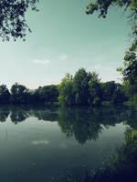 Dark pond 3 by FrantisekSpurny