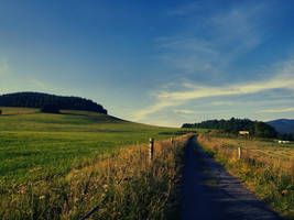 Summer road 3 by FrantisekSpurny