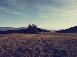 field 5 by FrantisekSpurny