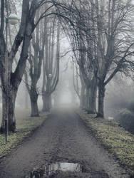 Dark Path 2 by FrantisekSpurny