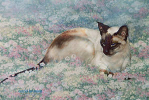 Jezebelle - Acrylic Painting by AstridBruning