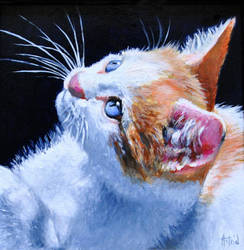 My Clawed Monet - Miniature PAINTING by AstridBruning