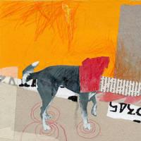 strange dog by veroklotz