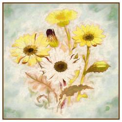 Yellow Daisies by vanndra