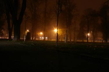 City park at night by flegmatyk