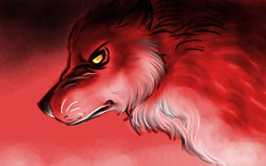 Red wolf sketch by FuriarossaAndMimma