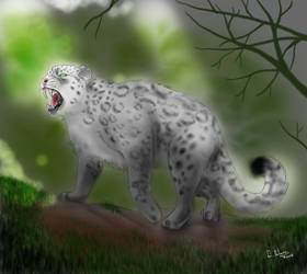 Commission - Snow Leopard by FuriarossaAndMimma
