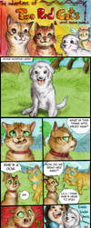 Two Red Cats - Strip 80 - A new white friend by FuriarossaAndMimma
