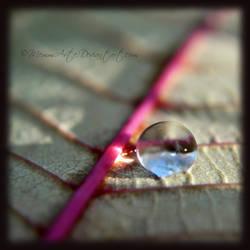 Little Droplet by Memmarte