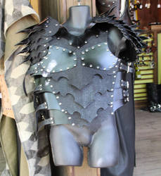 Dark Knight Field Plate Variant by ImperialArmories