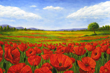 Poppy Field by Bertrood