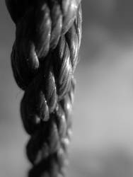 Old Rope by Bertrood