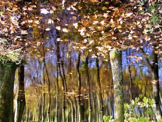 Autumn II by credosomnium
