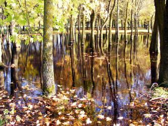 Autumn IV by credosomnium
